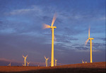 Wind turbines, dawn lighting