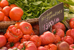 Organic vegetables at farmers market; October 2008; Nevada City, California