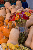 Pumpkins, squash, and flowers at farmers market; October 2009, Nevada City California