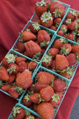 Organic strawberries at farmers market; October 2009, Nevada City California