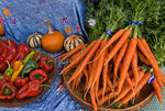 Organic carrots, peppers, squash at farmers market; October 2009, Nevada City California