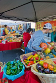 Farmers' market, downtown Nevada City, California