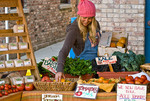 Young woman working at farmer's market, Nevada City, California