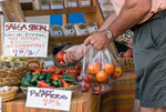 Shopping at Farmer's Market, Nevada City, California