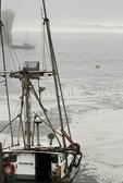 Fishing boats, foggy morning, Pacific Ocean, Trinidad California