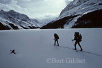 Departing across Bow Lake in Banff National Park, Alberta, for seven-day hut-to-hut ski trip.