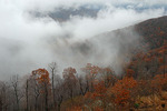 Fall, Shenandoah National Park