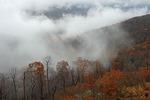 Fall, Shenandoah National Park