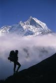 Trekker, Machupuchari, Nepal