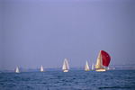Sailboats in Hamilton Harbour of Lake Ontario