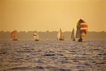 Sailboats in Hamilton Harbour of Lake Ontario at sunset