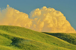 Grasslands at sunset with cumulus cloud buildup for powerful storm