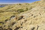 Badlands of teh Sandcastle