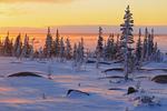 Sunrise along the Hudson Bay coast
