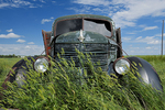 Old International truck on farm