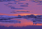 Detail of ice and water in Hudson Bay at dawn