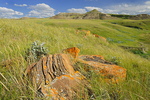 Sandstone rocks on prairie in the Killdeer Badlands. East Block.