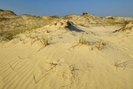 Sand dunes at Carter Bay onLake Huron