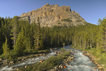 Mosquito Creek at Rocky Mountains near Bow Summit at sunset; Icefields Parkway