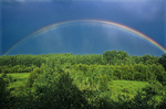 Rainbow over boreal forest