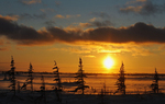 Sunset on tundra along the Hudson Bay coast