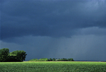 Soybean filed and storm light