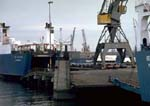 Large cargo vessel and loading cranes in Rotterdam Harbor