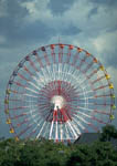 Ferris wheel at an amusement park