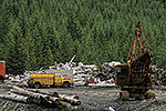 An old logging operation on Mitkof Island, Tongass National Forest, Alaska