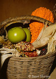 Autumn basket of Indian corn, apples and gourds