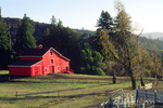 Red barn surrounded by woods, with white barnyard fence