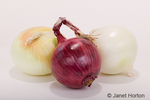 Whole red onion, white onion and Mayan sweet onion