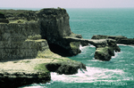 Natural rock bridge and cliffs by the ocean.