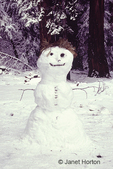 Snowman with a pine needle hat and stick arms, built next to forest in the Sierra Nevada Mountains