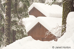 House covered with deep snow after major snowstorm, in heavily forested yard in Sierra Nevada Mountains