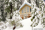 House covered with deep snow after major snowstorm, in heavily forested yards in Sierra Nevada mountains