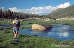 Man fly fishing for golden trout in Horseshoe Creek in Horseshoe meadow