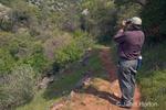 Man bird watching with binoculars, standing on Natural Bridges trail