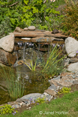 Close-up of waterfalls in pond in my backyard