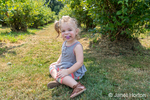 Twenty month old Lily having fun at a U-Pick Blueberry Farm