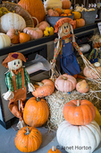 Variety of pumpkins and scarecrows as Halloween decor at a produce stand.