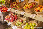 Crimson Crisp, Northern Spy, Spitzeburg, Rome and other apples for sale at a fruit stand.