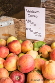 Heirloom Cameo apples for sale at a fruit stand.