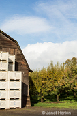 Barn and bins for storing produce from the orchard.