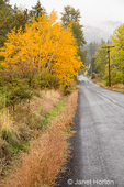 Beautiful autumn landscape seen on their Fruit Loop drive on a rainy day.