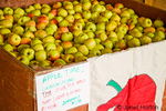 Large bin of organic Gravenstein apples with a cloth picture of an apple, at Fall City Farms
