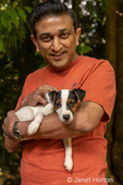 """Man holding his two month old Jack Russell Terrier """"Harry""""."""