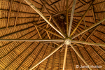 Looking up at a circular plaited palm thatched roof interior.
