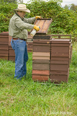 Man using a spray bottle of Beego on the cover to make the bees leave the top part of the hive and go down into the deep super.