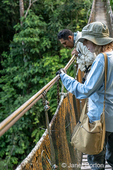 Tourguide and tourist looking down from a wooden footbridge canopy walk.